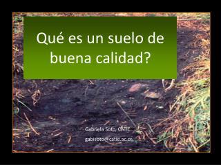 Qué es un suelo de buena calidad?
