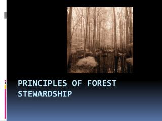 Principles of Forest Stewardship