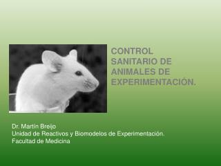 Dr. Martín Breijo Unidad de Reactivos y Biomodelos de Experimentación. Facultad de Medicina