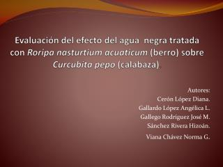 Autores: Cerón López Diana. Gallardo López Angélica L. Gallego Rodríguez José M.