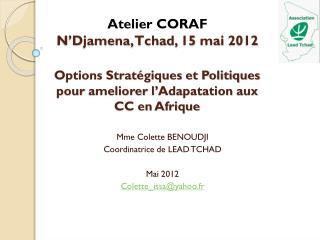 Options Stratégiques et Politiques pour  ameliorer  l' Adapatation  aux CC en Afrique