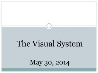 The Visual System May 30, 2014