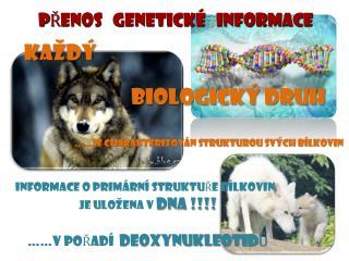 PŘENOS   GENETICKÉ   INFORMACE