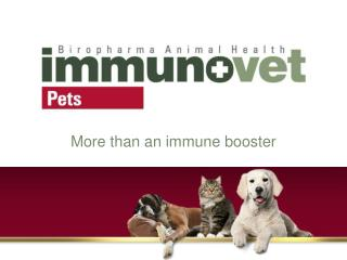 More than an immune booster