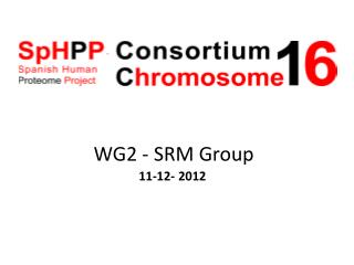 WG2 - SRM  Group