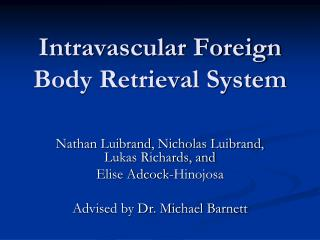 Intravascular Foreign Body Retrieval System