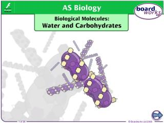 Water  (H 2 O) consists of two hydrogen atoms covalently bonded to one oxygen atom.