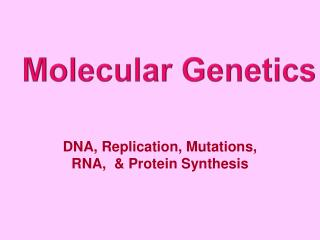 DNA, Replication, Mutations, RNA,  & Protein Synthesis
