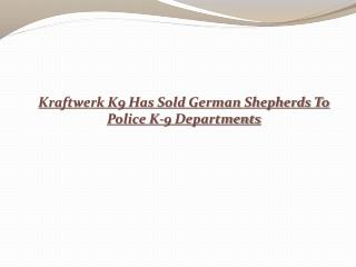 Kraftwerk K9 Has Sold German Shepherds To Police K-9 Departm