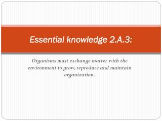Essential knowledge 2.A.3: