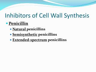 Inhibitors of Cell Wall Synthesis