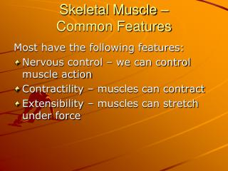 Skeletal Muscle –  Common Features