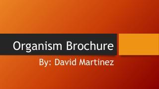 Organism Brochure