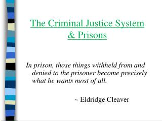 The Criminal Justice System  & Prisons