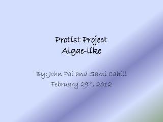 Protist Project Algae-like