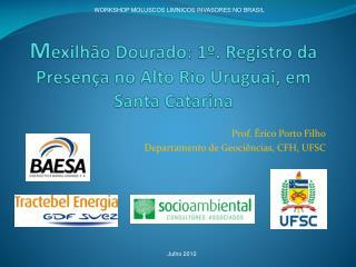 M exilhão Dourado: 1º. Registro da Presença no Alto Rio Uruguai, em Santa Catarina