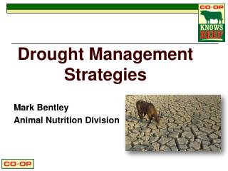 Drought  Management Strategies