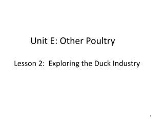 Unit E: Other Poultry