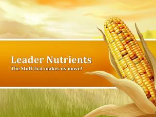 Leader Nutrients