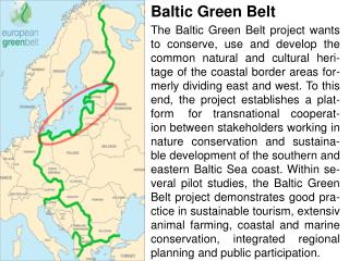 Baltic Green  Bel t