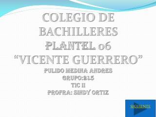 COLEGIO DE BACHILLERES  PLANTEL  06 �VICENTE GUERRERO� PULIDO MEDINA ANDRES  Grupo:215 TIC II