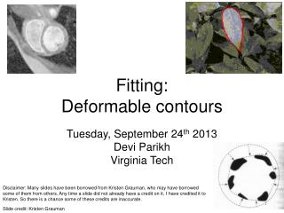 Fitting: Deformable contours