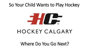 So  Your Child Wants  to Play Hockey