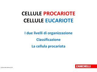 CELLULE  PROCARIOTE CELLULE  EUCARIOTE