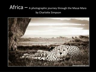 Africa �  A photographic journey through the  Masai  Mara   by Charlotte Simpson