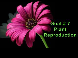 Goal # 7 Plant Reproduction