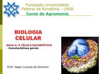 Fundação Universidade Federal de Rondônia - UNIR  Curso de Agronomia