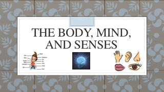 The Body, Mind, and Senses