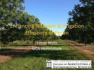 Enhancing Nitrogen & Irrigation Efficiency of Pecan