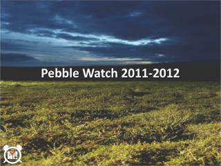 Pebble Watch 2011-2012