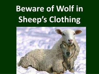 Beware of Wolf in Sheep�s Clothing