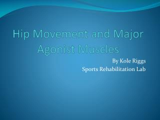 Hip Movement and Major Agonist Muscles