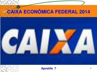 CAIXA ECONÔMICA FEDERAL 2014