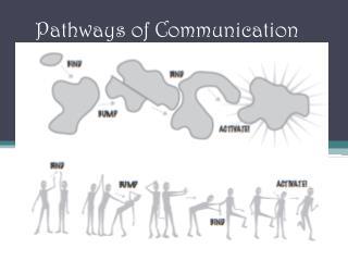 Pathways of Communication