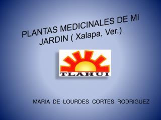 PLANTAS MEDICINALES DE MI JARDIN ( Xalapa, Ver.)