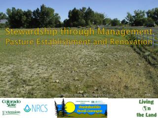 Stewardship through Management Pasture Establishment and Renovation