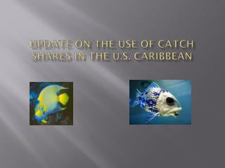 Update on the Use of Catch Shares in the U.S. Caribbean