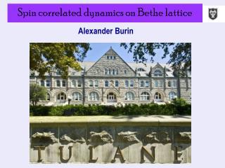 Spin correlated dynamics on Bethe lattice