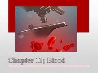 Chapter 11; Blood