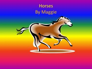 Horses By Maggie
