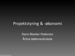 Projektstyring & -økonomi