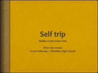 Self trip