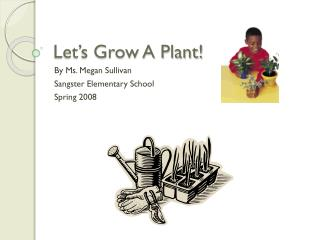 Let's Grow A Plant!