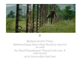 B Barbed  electric Fence Katniss  always knew when the fence was not on until
