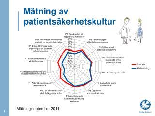 Mätning av patientsäkerhetskultur