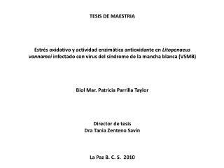 TESIS DE MAESTRIA